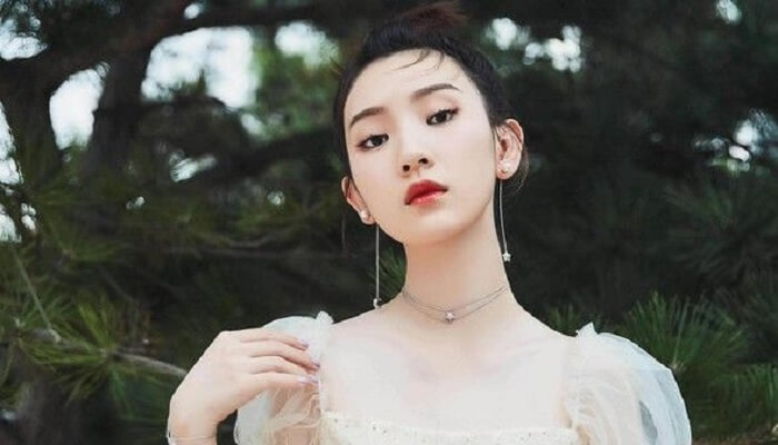 Amy Sun - Age, Height, Movies, Biography, Husband, Net Worth, Wiki & More