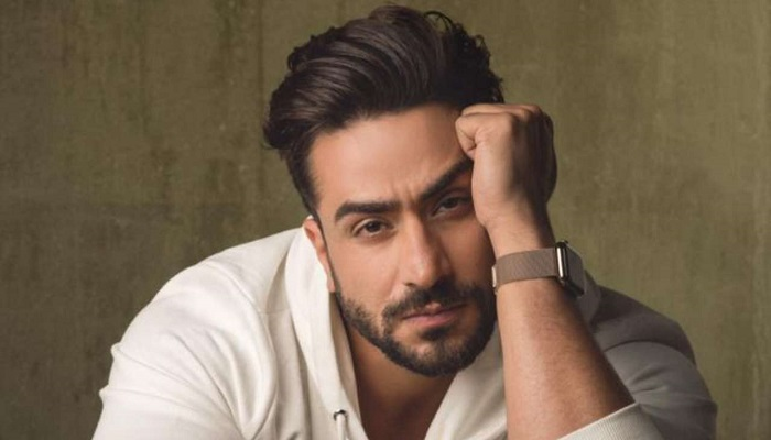 Aly Goni - Age, Height, Movies, Biography, Husband, Net Worth, Wiki, Facts & More